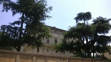 Villa Farnesina 1